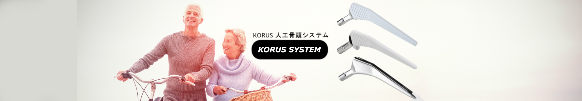GB KORUS SYSTEM